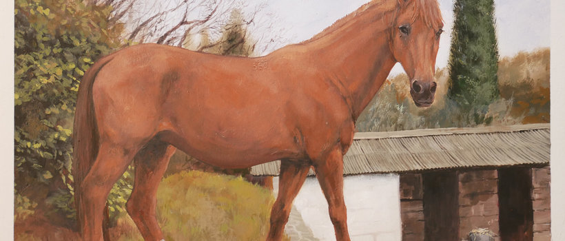 Lučka Commission painting horse