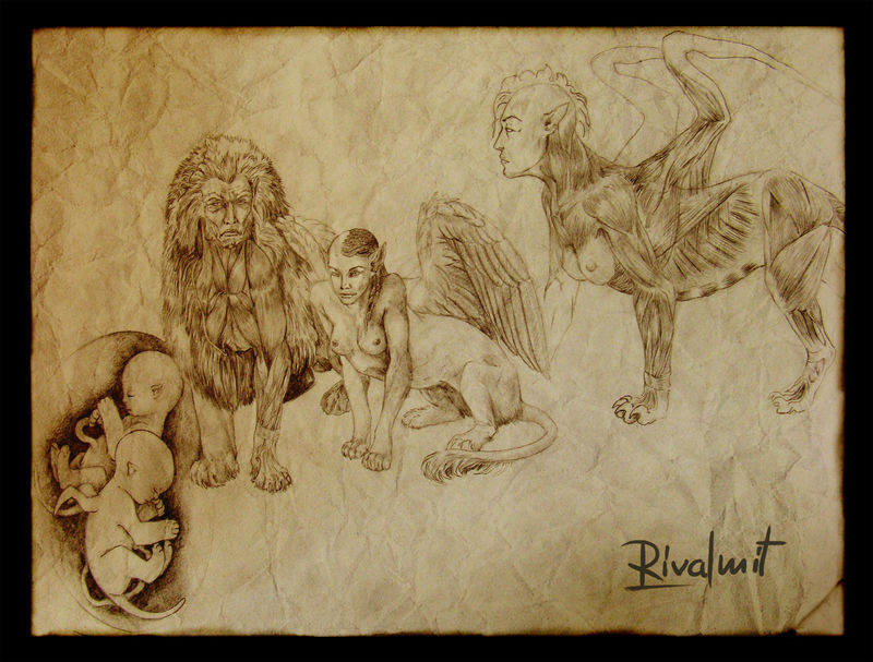 drawing anatomy sphinx mythology anthropomorphic Drawings Sphinx anatomy Drawings
