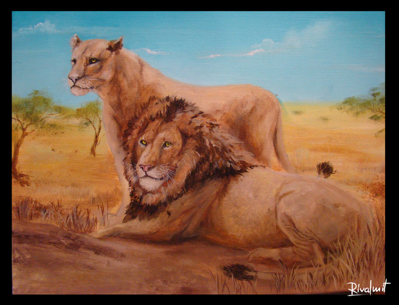 lion lioness africa savanna grassland painting canvas acrylic Paintings Lions in savanna Paintings