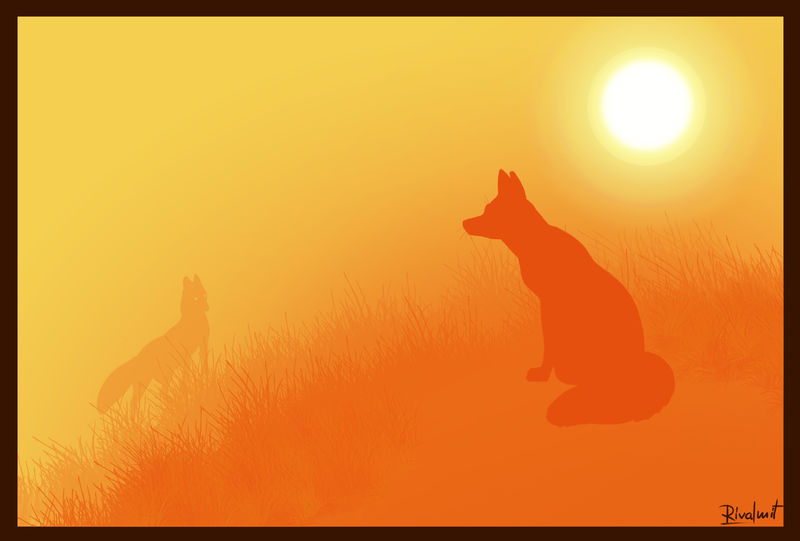 digital digital drawing fox contrast sunset Digital Drawings Brief encounters Digital Drawings