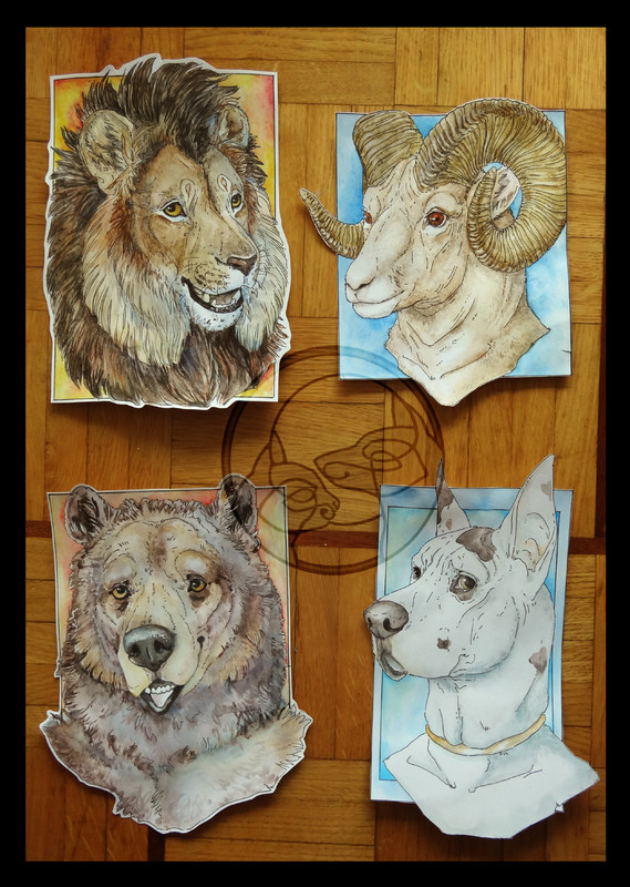 drawing bear ram sheep great dane dog watercolour Badges