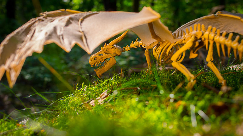 poseable dragon skeleton sculpture death Sculptures  Living Skeleton Dragon  Sculptures