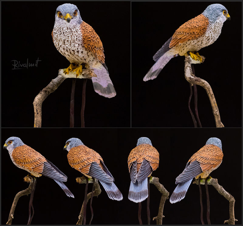 kestrel companion bird sculpture Sculptures Kestrel Sculptures
