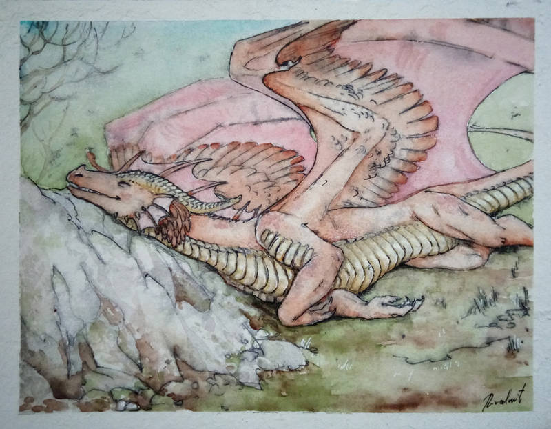 dragon drawing watercolor Drawings Sleeping dragon on a sunny day   Drawings