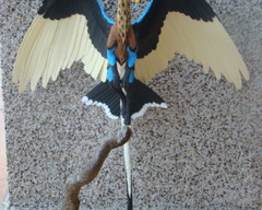 sculpture commission artwork balanced companion  dragon winged dutch angel DAD